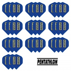 10 - Sets Pentathlon 100 micron flights - Blauw